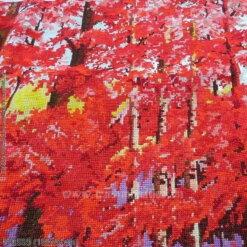 FJ0509 Tranh thêu chữ thập Rừng cây lá đỏ kích thước lớn